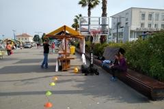 Dan zdravja v Kopru / Giornata della salute a Capodistria